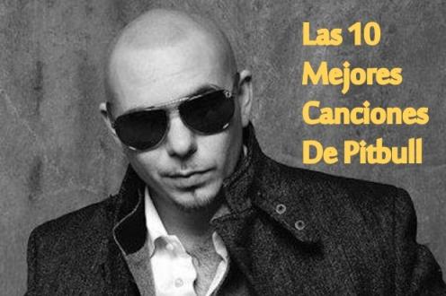 pitbull top 10