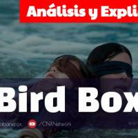 Bird Box: A Ciegas ^ Análisis y Explicación