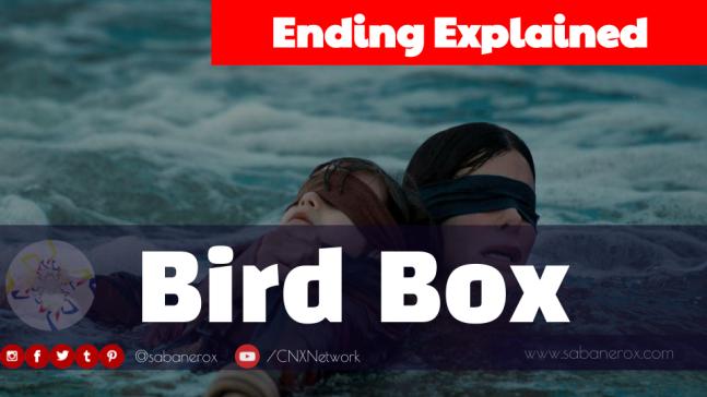 Bird Box Ending Explained Sabanerox